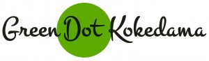 Checkout or Kokedama Store!