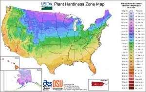 USDA Hardiness Zones Map