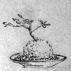 Kokedama in a dish of pebbles